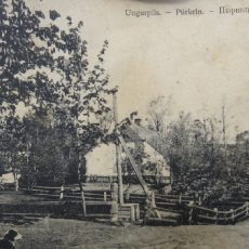 Ziedulejas vējdzirnavas (Ungurpils vējdzirnavas)